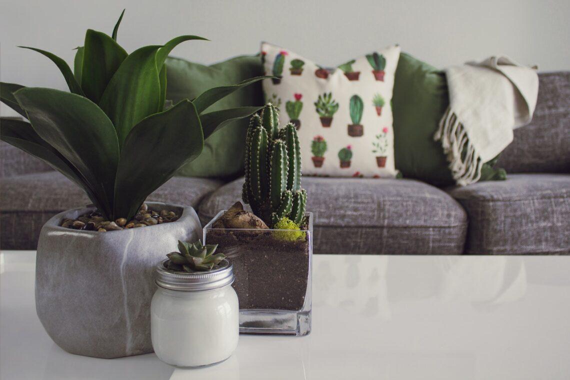 O que você precisa ter para abrir um negócio de decoração? (Foto de Designecologist no Pexels)
